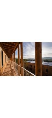 Συντηρητικά ξύλου - Βερνίκια Βάσης
